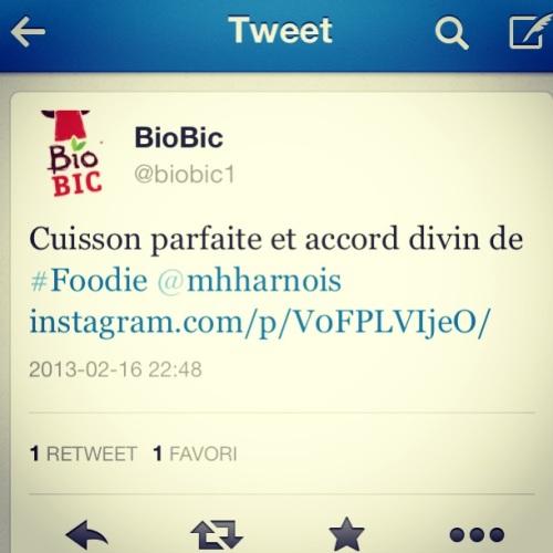 twitter biobic 2