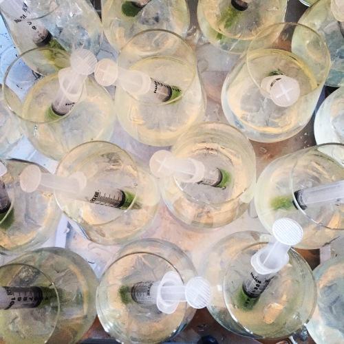 Gin tonic et purée de concombres