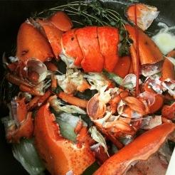 Carcasse homards en bouillon